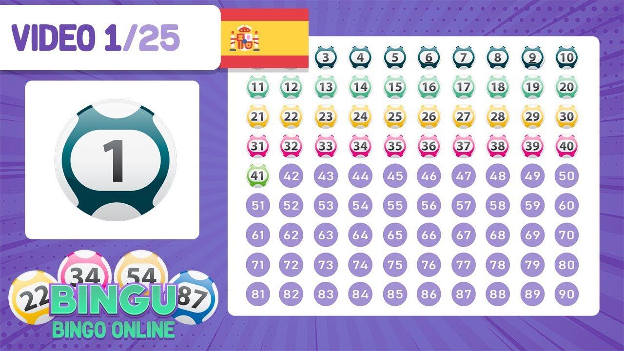 Explicaciones de Bingo online42763